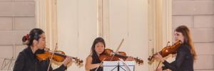 masterclass viool-12